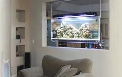 Аквариумы в декоре квартиры