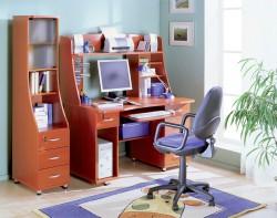 Выбор детского рабочего стола