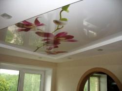 Художественные потолки – критерии выбора
