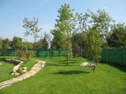 Порядок работ по озеленению территории