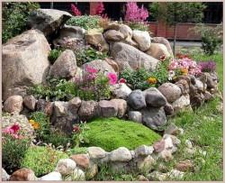 Делаем правильный выбор растений для альпийской горки