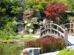Приемы обустройства садового участка