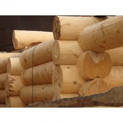 Тонкости постройки сруба для бани