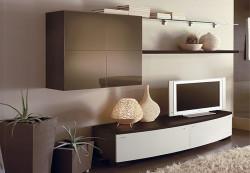 Мебельные стенки в интерьере гостиной