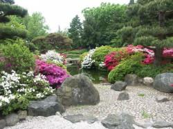 Обустраиваем сад в китайском стиле
