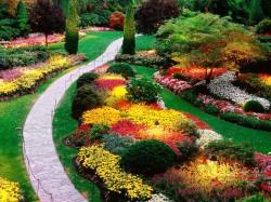 Как правильно подобрать растения для ландшафтного дизайна сада?