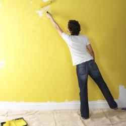 Окрашивание стен: этапы процесса и подробности работы