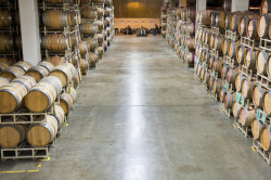 Napa Valley Wine Cellar