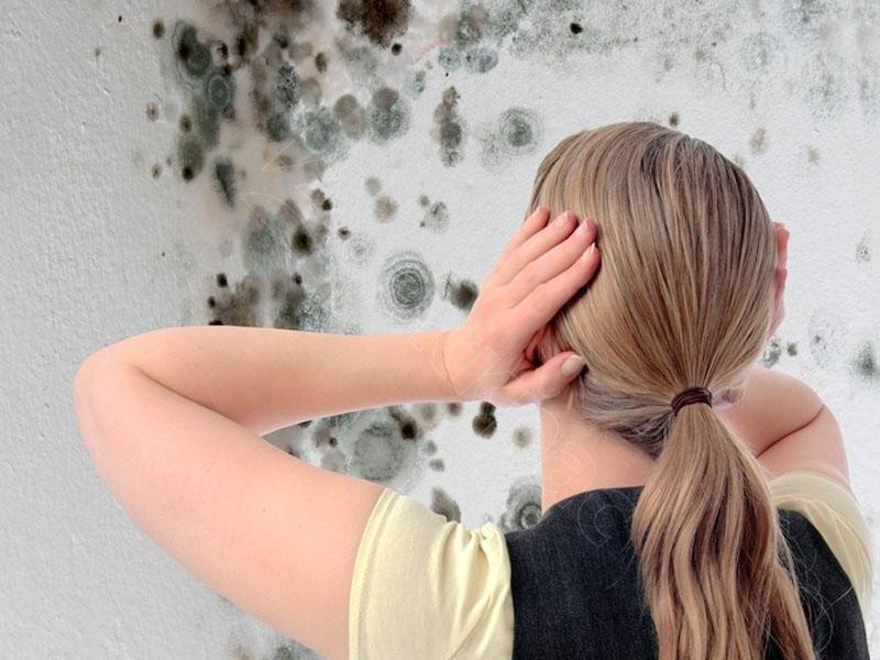 Как бороться с высокой влажностью в квартире