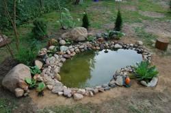 Создание на приусадебном участке водоема